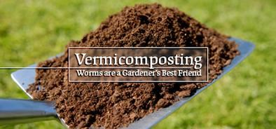 Vermicomposting - Worms are a gardeners best friend