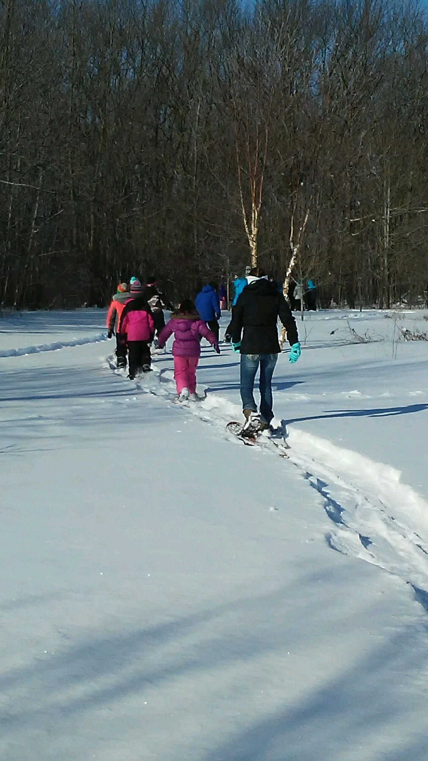 People walking in a line on snowshoes