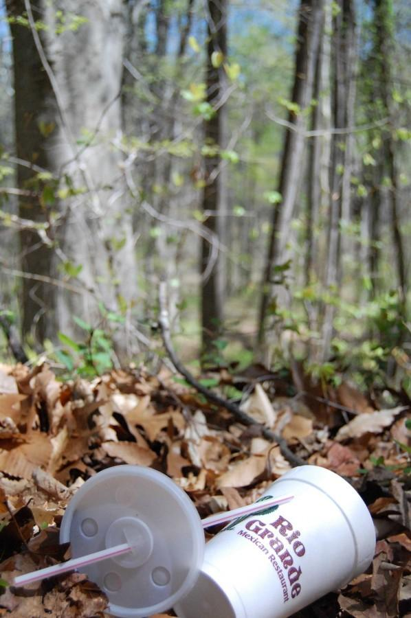 A soda cup laying on the ground in the woods